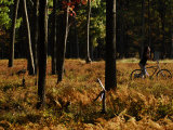 Cyclist in a Woodland in the Fall Photographic Print by Raul Touzon