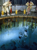 Submarine Trainee and Instructor Rise to Surface of Training Tank Photographic Print by David Boyer