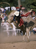 Rodeo Rider Being Bucked Off of a Bull Fotografisk tryk af Chris Johns