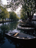 Rowboats Docked in a Tree-Lined Canal in Annecy, France Photographic Print by Ed George