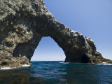 Anacapa Island Arch in the Channel Islands National Park, Close-Up Fotografie-Druck von James Forte