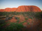 Ayers Rock (Uluru), in Evening Light with Bush in Foreground Photographic Print by Brooke Whatnall