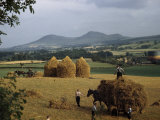 Men Harvest Oats Below Eildon Hills Photographic Print by B. Anthony Stewart