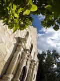 San Antonio, Texas, the Alamo, Side Angle Wide Angle View of Facade Photographic Print by Richard Nowitz