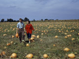 Couple Walks Through a Field Dotted with Ripe Pumpkins Photographic Print by Jack Fletcher