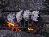 Oysters Roasting on a Grate over a Campfire Photographic Print by Ed George