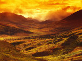 Enhanced Sunset in Mountain Valley, Tombstone Territorial Park Photographic Print by Nick Norman