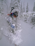 Skier Turns in Powder Snow Between Snowy Trees Called Snow Ghosts Photographic Print by Gordon Wiltsie