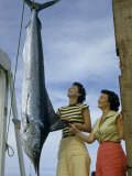 Women Inspect a White Marlin Hanging by its Tail Photographic Print by B. Anthony Stewart