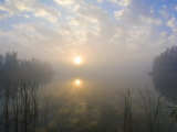 Sun Reflecting Off of a Lake During Extremely Foggy Conditions Photographic Print by Mike Theiss
