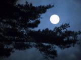 Moonrise over Matsushima's Pine Clad Islands Photographic Print by Michael S. Yamashita