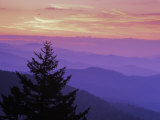 Sunrise in the Smoky Mountains Reproduction photographique par Greg Dale