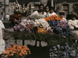 Group of People Stand Behind a Flower Booth Photographic Print by Jacob Gayer