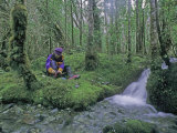 Mountaineer Rests in a Mossy Rain Forest Above the Southern Fjords Photographic Print by Gordon Wiltsie