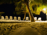 Chairs Lined Up on a Beach, and Palm Trees at Night Photographic Print by James Forte