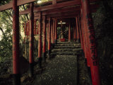 Stairway to a Mountain Temple in Beppu Fotografisk tryk af Paul Chesley