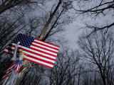 Statue of Liberty and American Flags in a Forest Photographic Print by Raul Touzon