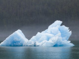 Blue Iceberg from the Sawyer Glacier Photographic Print by Rich Reid