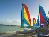 Catamarans with Colorful Sails on a Beach Photographic Print by James Forte