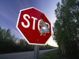 Stop Sign with a Large Bullet Hole Photographic Print by Michael Melford