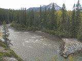 Kananaskis River Flows in Kananaskis Provincial Park Near Calgary, Alberta Photographic Print by Gordon Wiltsie