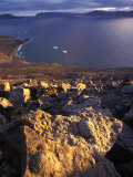Fossils on Rocks Photographic Print by Nick Norman
