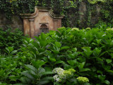 Garden of the Santo Domingo Convent Photographic Print by Raul Touzon
