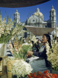 Woman Sells Flowers in Plaza Near Our Lady of Guadalupe Church Photographic Print by Justin Locke