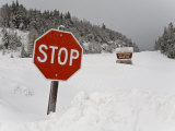 Winter Storm Buried a Road in the White Mountains with Snow and Ice Photographic Print by Mike Theiss