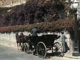 Man Steers an Open Carriage Pulled by a Pair of Chilean Horses Photographic Print by Jacob Gayer