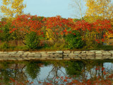 Fall Foliage and Reflections in the Arlington Reservoir Photographic Print by Darlyne A. Murawski
