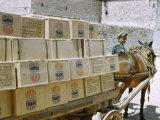 Man and Mule Cart Transport Boxes of Food Aid from United States Photographic Print by Maynard Owen Williams