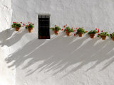 Potted Red Geraniums Cast Shadows on a Whitewashed Wall with a Window Photographic Print by Raul Touzon