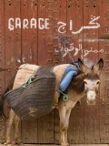 "Mule Parked in Front of a Sign That Reads ""Garage"" Photographic Print by Abraham Nowitz"