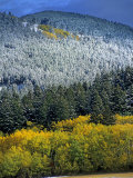 Fall Colors and First Snow in the Gallatin Range Near Bozeman Photographic Print by Gordon Wiltsie