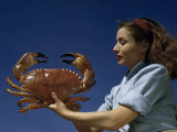 Woman Holds a Crab Caught in the Bay of Biscay Fotografie-Druck von Luis Marden