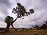 Tree House Overlooks Adelaide Hills Farmland at Sunset Photographic Print by Brooke Whatnall