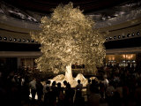 Sound and Light Tree of Prosperity Performance at a Resort Hotel Photographic Print by  xPacifica