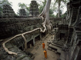 Buddhist Monks Near Large Strangler Fig at the Ta Phrom Temple Fotografisk tryk af Paul Chesley
