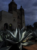Agave Plant and the Church of Santo Domingo at Night Photographic Print by Raul Touzon