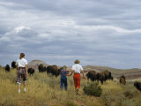 Tourists Walk into a Herd of Grazing Buffalo on State Park's Range Photographic Print by Ralph Gray