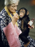 Young Chimpanzee Sips Medicine Administered by Elderly Woman Photographic Print