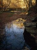 Footbridge over a Woodland Creek Photographic Print by Raymond Gehman