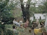 Men and Women Relax in Quiet Backyard Garden Photographic Print by B. Anthony Stewart