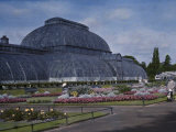 Glass-Enclosed Palm House in Kew Gardens Photographic Print by Clifton R. Adams