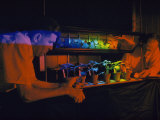 Scientists Study the Effects of Light on Plant Life Cycles Photographic Print by Jack Fletcher