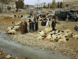Shepherds and their Flocks Gather by a Stream on Amman's Outskirts Photographic Print by Maynard Owen Williams