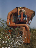 Farmer Drives a Mechanical Picker Through a Cotton Field Photographic Print by Joseph Baylor Roberts