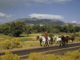 Rancher Leads His Horses on Country Road, Mountains Line Horizon Lámina fotográfica por Justin Locke