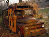Old Rusting School Bus Sitting Among the Trees Photographic Print by Raymond Gehman